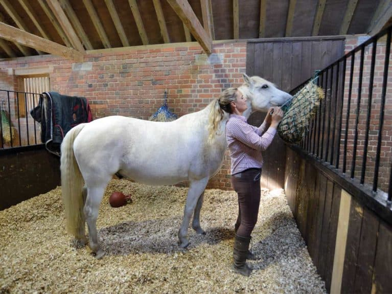 Horse in a stable with haynet