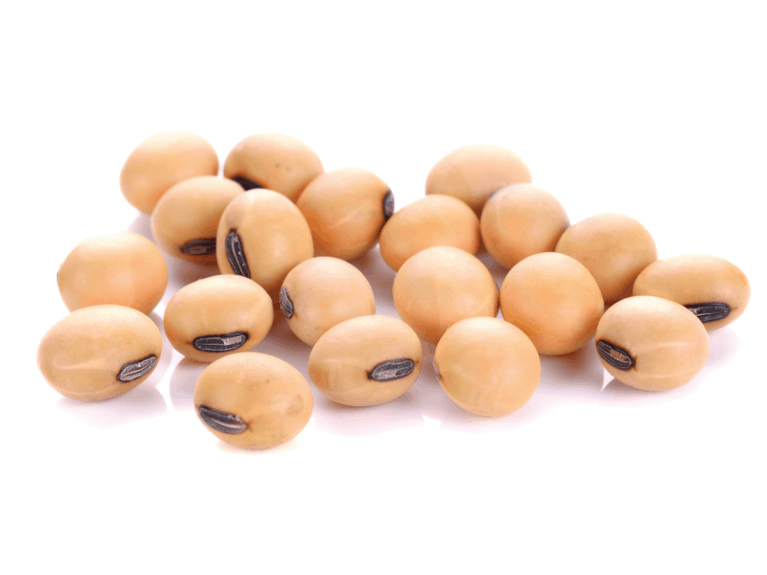 Horse feed legumes