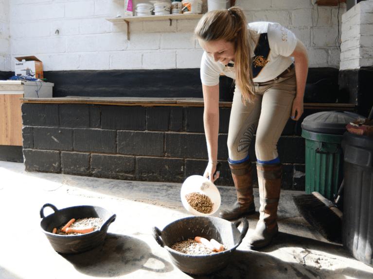 Making horse feeds
