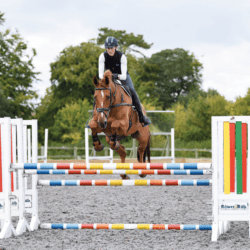 Jumping a course of show jumps