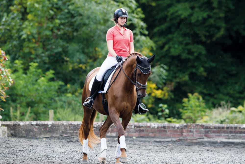 October Horse&Rider correctly schooling your horse