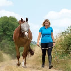 Creating a good horse/life balance