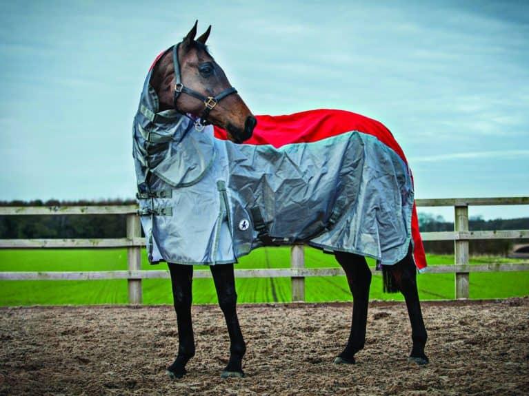 Derby House Elite Stormsafe rug