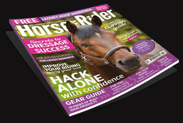 November Horse and Rider Magazine