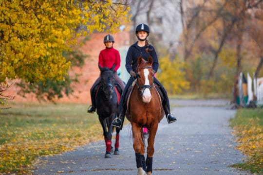 Horse and riders hacking in Autumn