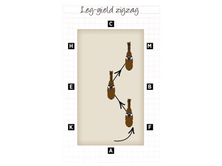 Diagram of leg-yield zigzag exercise