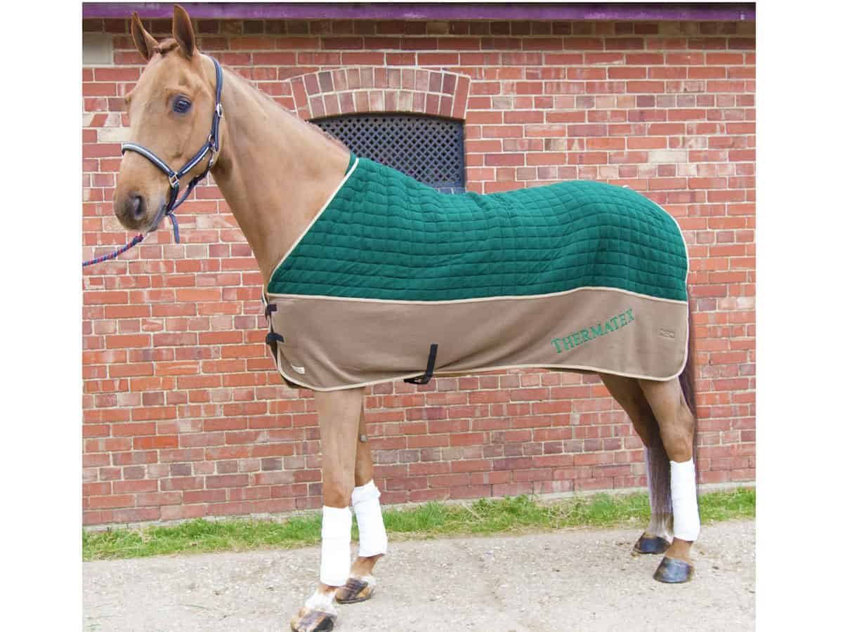 Thermatex Duet Rug Horse And Rider
