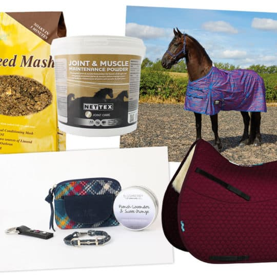 Horse&Rider December giveaway
