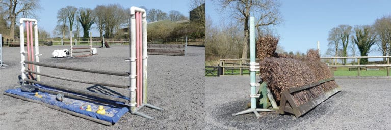 Water tray and bullfinch fences are found in working hunter shows