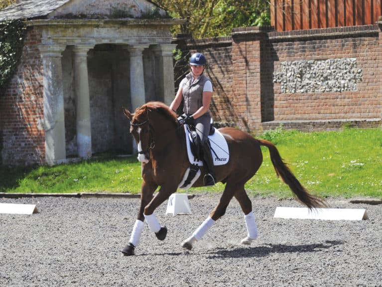 Riding a novice dressage test