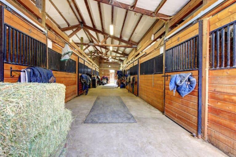 Horse Indoor Stables