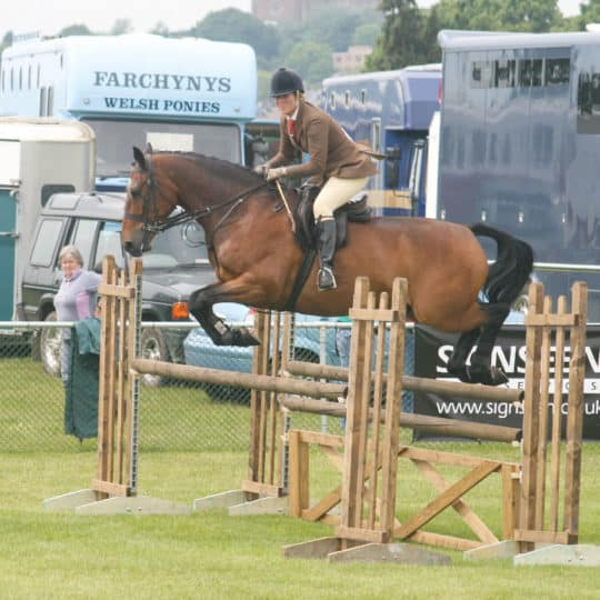 Competing in a working hunter class