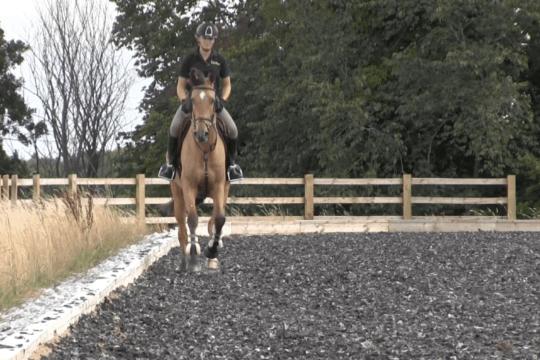 Horse&Rider – January 2019