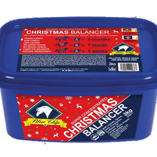 Limited edition Blue Chip Christmas Balancer