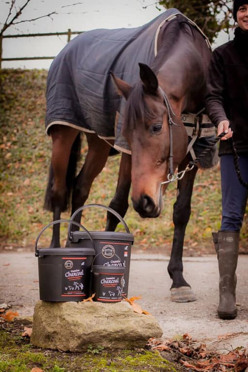 Dorset Charcoal Company horse and tubs