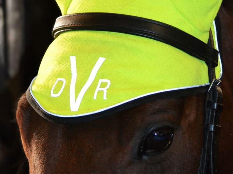 DVR Breathable Stretch ear bonnet