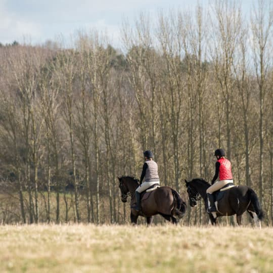 Riders hacking on a wintry morning