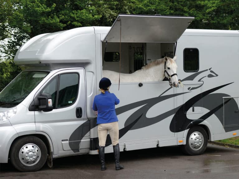 Horse loaded into a horse box