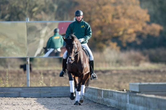 Gareth Hughes schooling lateral work