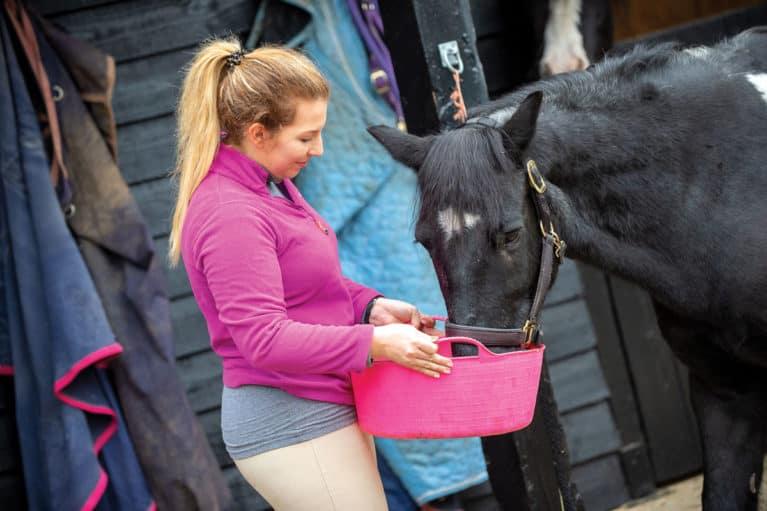 Feeding a retired horse