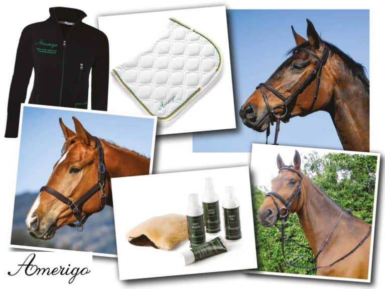 Amerigo tack bundle up for grabs in Spring Horse&Rider magazine