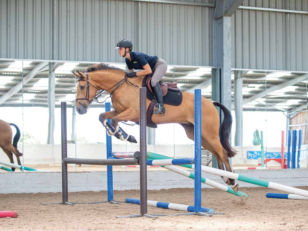 Making Shapes With Emily King Horse And Rider