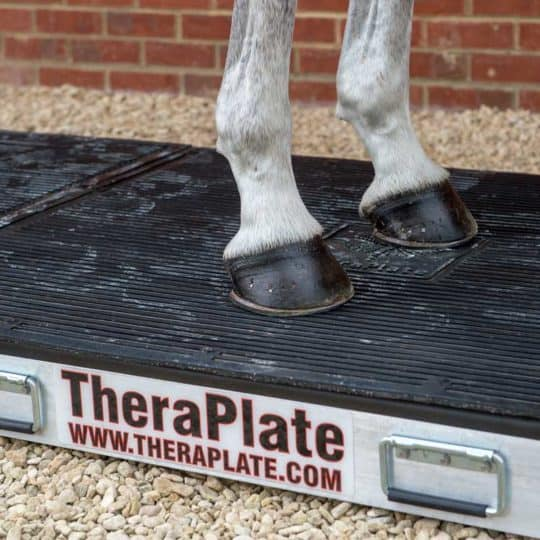 TheraPlate UK