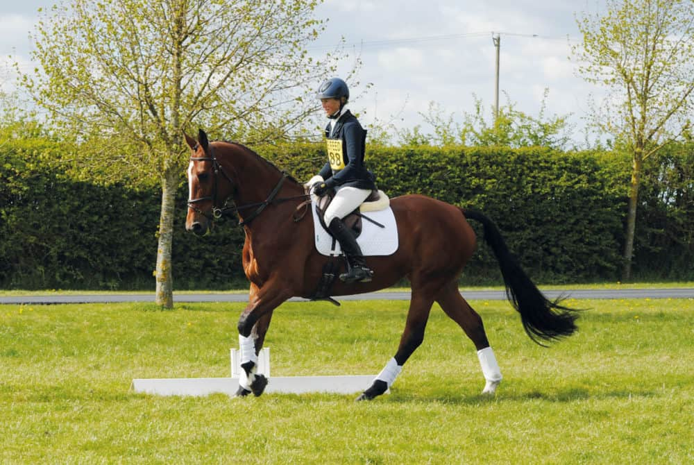 Rider at a competition