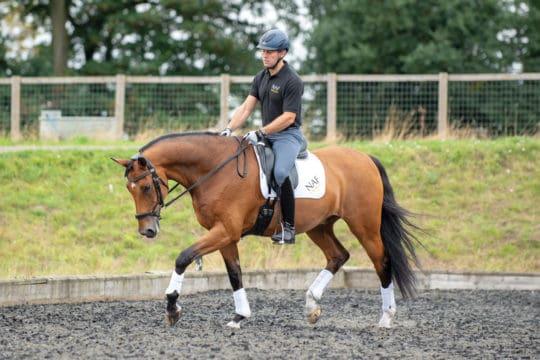 Spencer Wilton riding a horse stretching