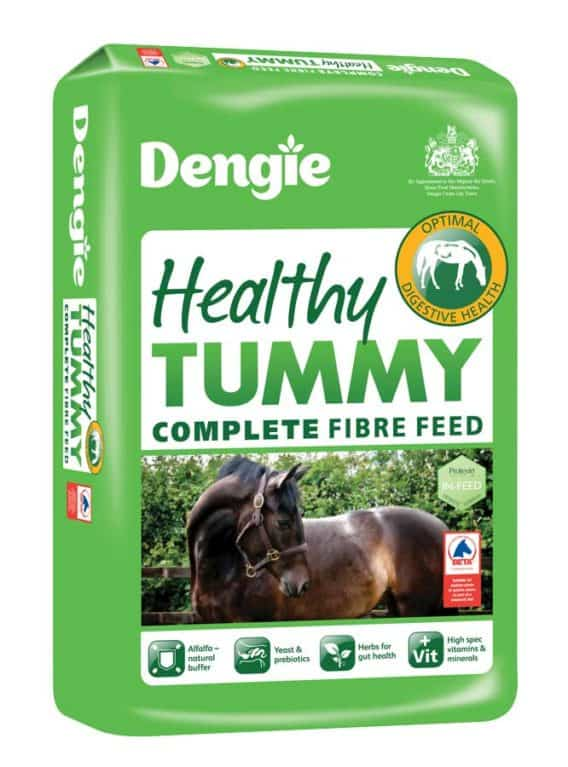 Dengie Healthy Tummy horse fibre feed