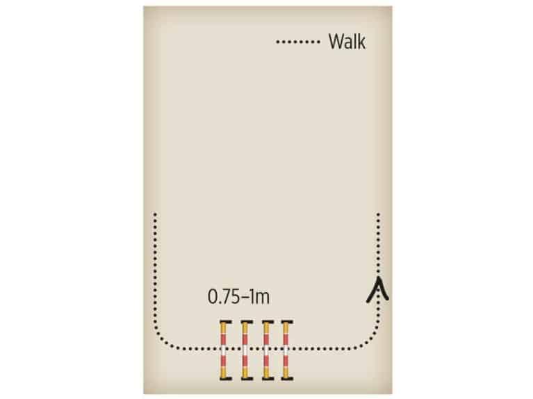 Cavaletti exercise diagram