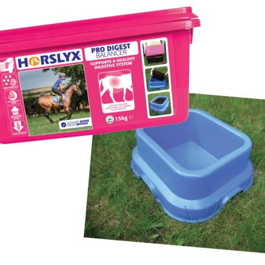 Horslyx competition