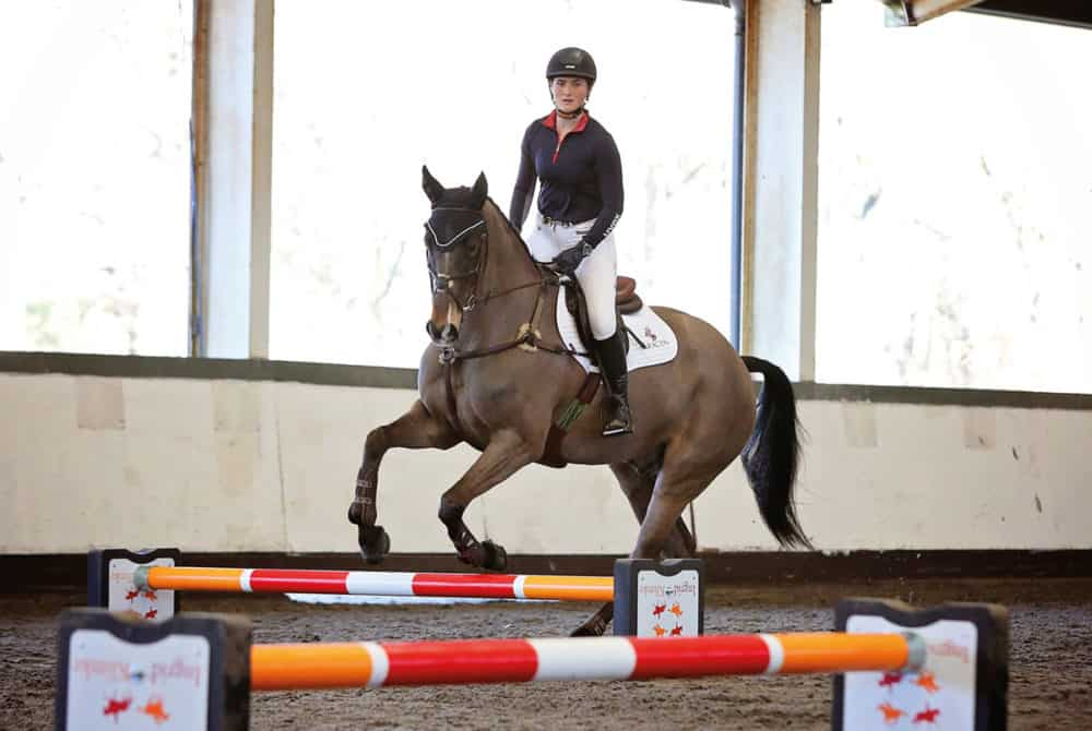 Horse cantering over cavaletti poles