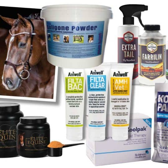 September Horse&Rider prize giveaway