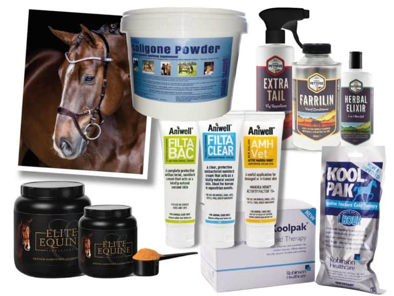 September Horse&Rider prize giveaway