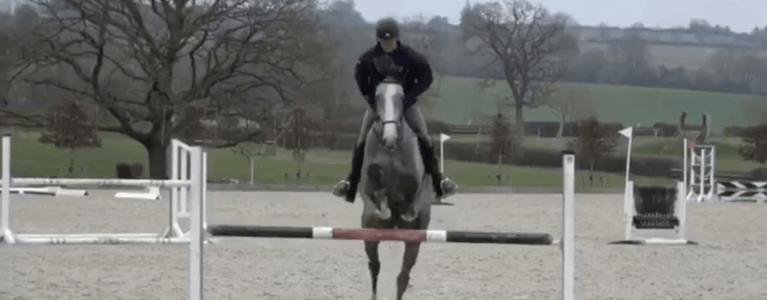 Dan Bizzaro KBIS jumping