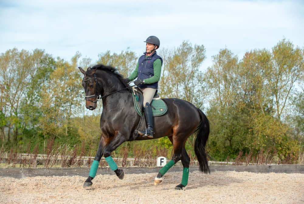Dan Greenwood demonstrating exercises to increase impulsion