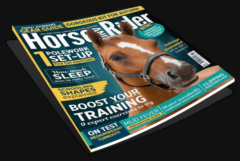 November Horse&Rider Magazine