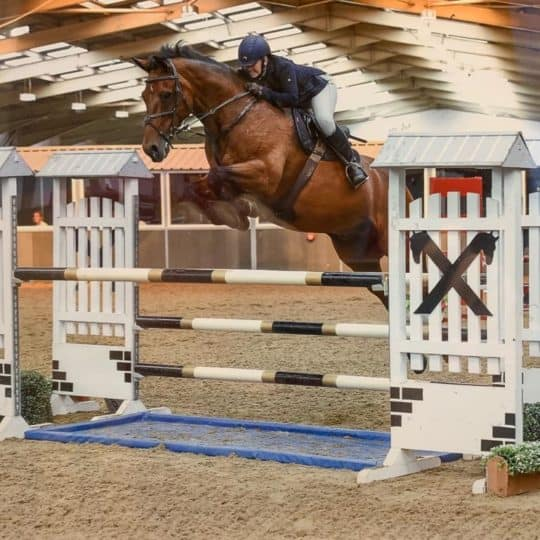 Vicky Mitson, Commercial Director for Science Supplements, qualifies for HOYS