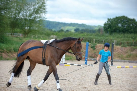 Lungeing your horse effectively