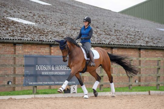 Sophie Wells demonstrating how to adjust your horse's paces