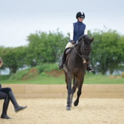 Horse and rider being assessed by an instructor