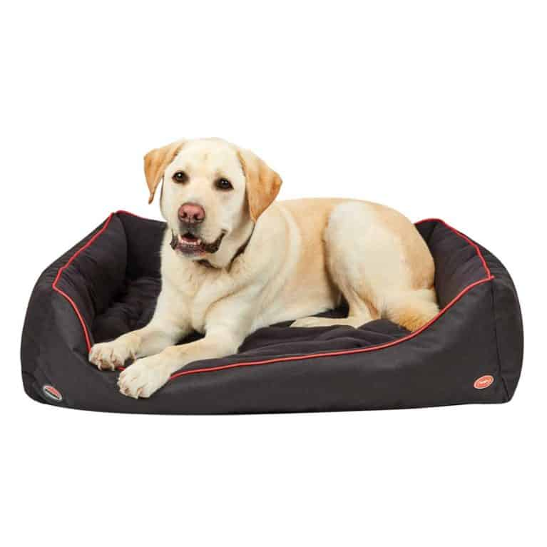 Weatherbeeta Therapytech dog bed