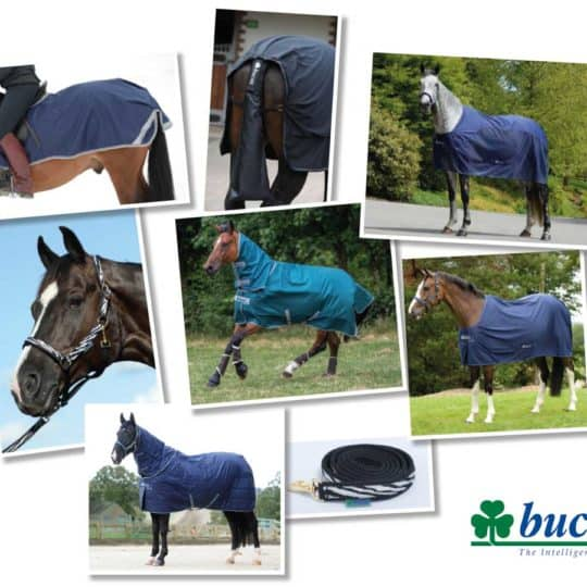 Bucas bundle competition