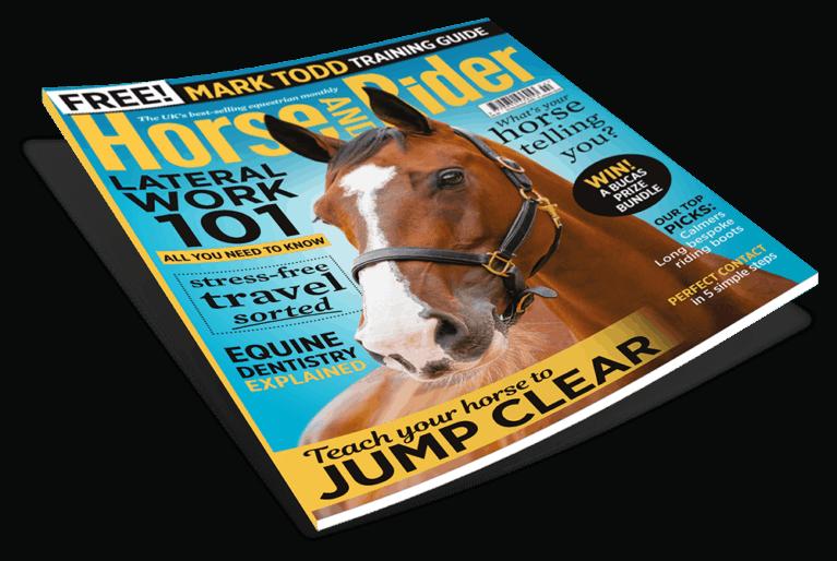 Horse&Rider magazine, February issue