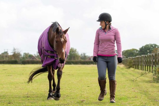 Using your body language to communicate with your horse