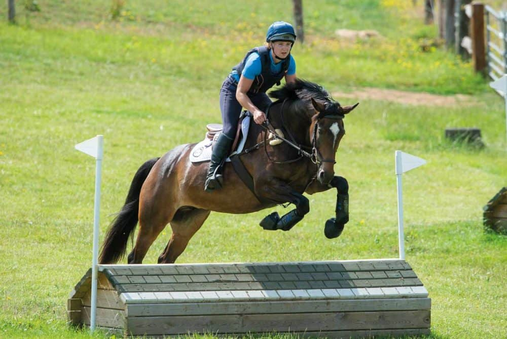 jumping cross-country jumps