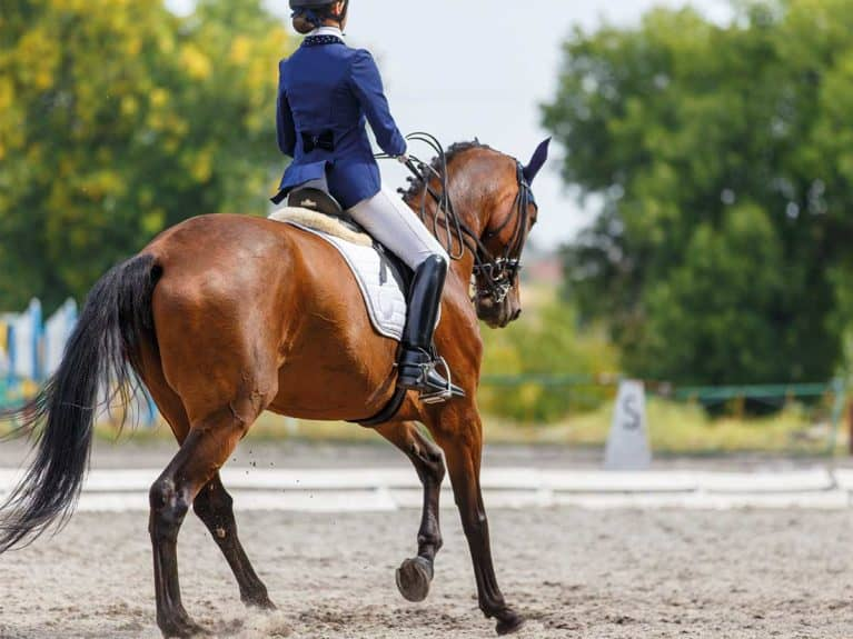 Girl competing in dressage competition