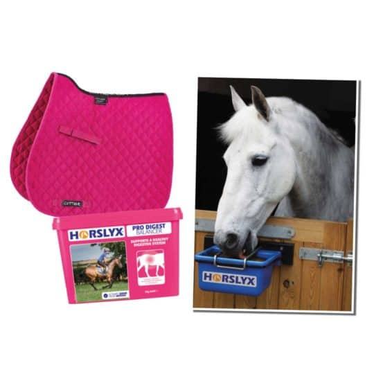 Horslyx bundle