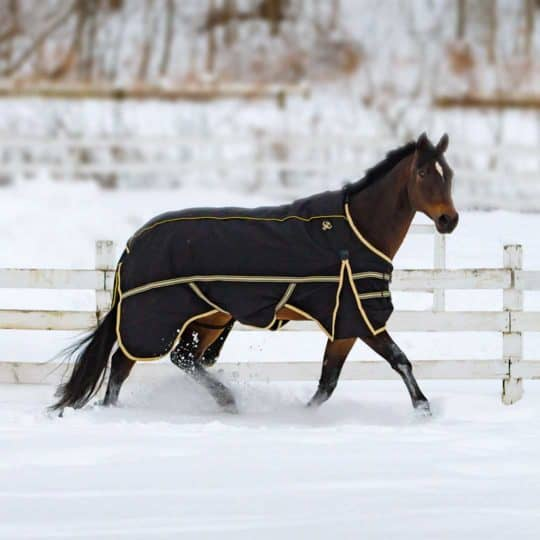 Noble Outfitters 4-in-1 turnout rug system